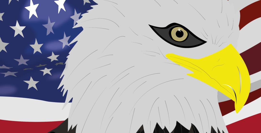 bald-eagle-final-deniscmerten2