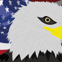 bald-eagle-final-deniscmerten2