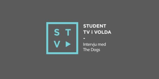 The-Dogs-Intervju-
